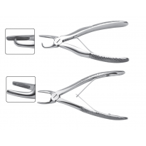 Small Animal Dental Forceps  (3)